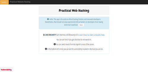 Practical Web Hacking